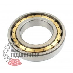 N220 M [CPR] Cylindrical roller bearing