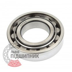 Cylindrical roller bearing N206 [GPZ-10]