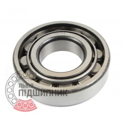Cylindrical roller bearing N307 [GPZ-10]