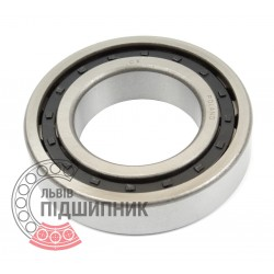 Cylindrical roller bearing NJ221 [CX]