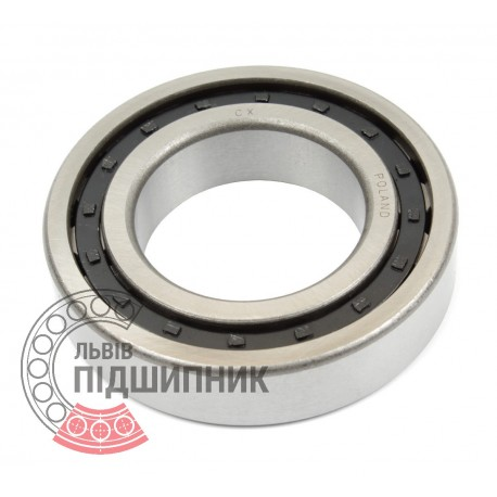 Cylindrical roller bearing NJ221 [CX]