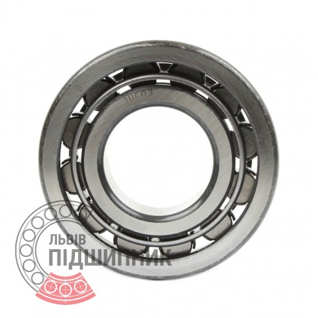 Cylindrical roller bearing NF315 [GPZ-10]