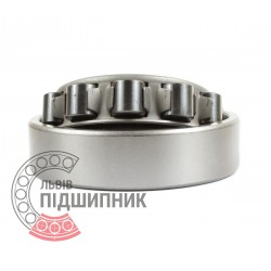 Cylindrical roller bearing N307