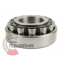 Cylindrical roller bearing N310 [VBF]