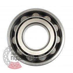 Cylindrical roller bearing N312