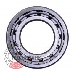 Cylindrical roller bearing NJ205 [GPZ]