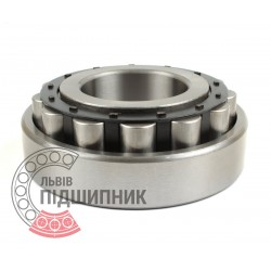 Cylindrical roller bearing N318 [DPI]