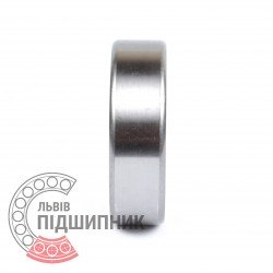 Deep groove ball bearing 6007