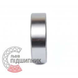 Deep groove ball bearing 6309 2RS [GPZ-4]