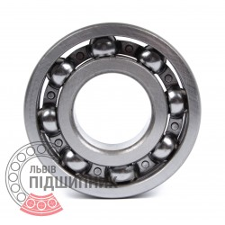 Deep groove ball bearing 6303 [DPI]