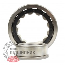 NJ 306M 30x72x19 mm  Cylindrical Roller Bearing