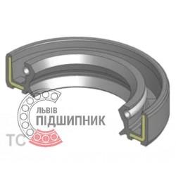 Oil seal 100x125x12 TC