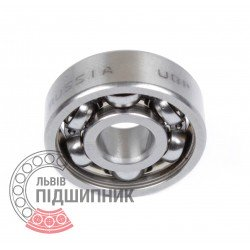 Deep groove ball bearing 6000Z [GPZ]