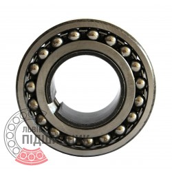 Self-aligning ball bearing 2310K+H2310 [GPZ-4]