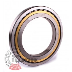 7002134 Cylindrical roller bearing