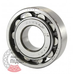 N305 [GPZ] Cylindrical roller bearing