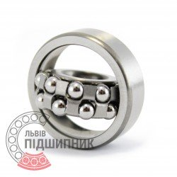 1201 [FBJ] Self-aligning ball bearing