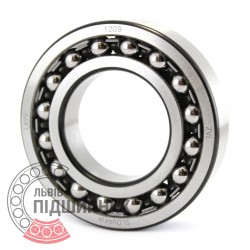 1209 [ZVL] Self-aligning ball bearing