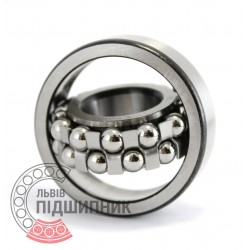 1204 [ZVL] Self-aligning ball bearing