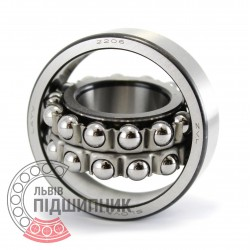 2206 [ZVL] Self-aligning ball bearing