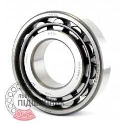 N310 [Kinex] Cylindrical roller bearing