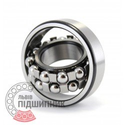 1205 [ZVL] Self-aligning ball bearing