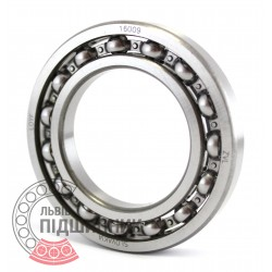 16009 [ZVL] Deep groove ball bearing