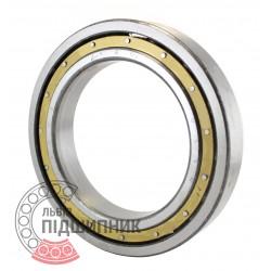 6020 Deep groove ball bearing