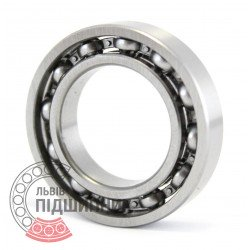 61905 2RS [GPZ-4] Deep groove ball bearing