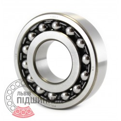 1307 [CX] Self-aligning ball bearing