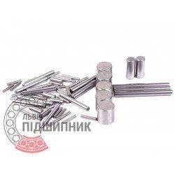 Bearing roller 2х19,8 mm