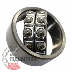2309 Self-aligning ball bearing