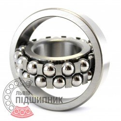 1309 Self-aligning ball bearing
