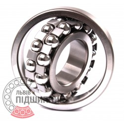 1310 Self-aligning ball bearing