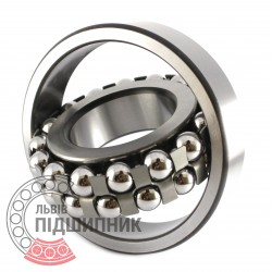1313 Self-aligning ball bearing