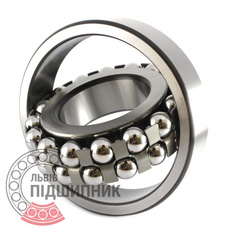 1313 Self-aligning ball bearing