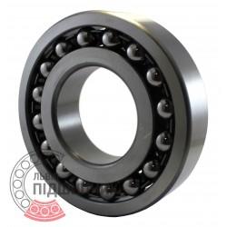 1317 [GPZ] Self-aligning ball bearing