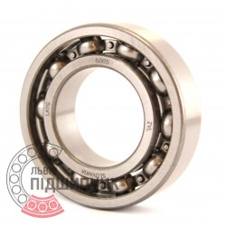 6005 [ZVL] Deep groove ball bearing
