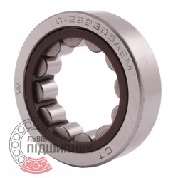 292305 Cylindrical roller bearing